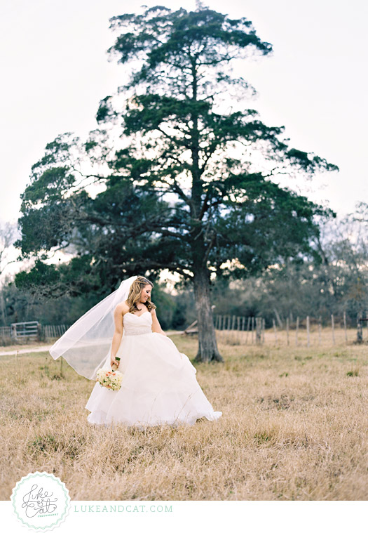 Full length bridal portait by cedar tree with veil blowing in the wind.
